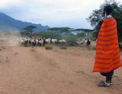 maasai-goats-small